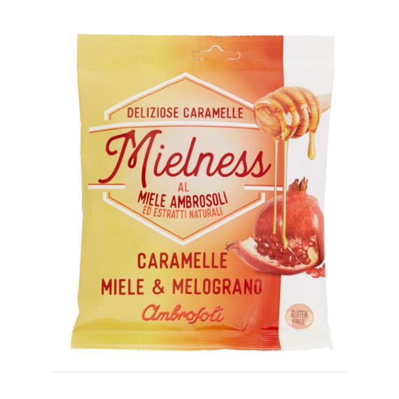 AMBROSOLI MIELNESS MIELE E MELOGRANO GR.90